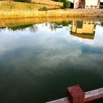 私も自分の姿を写してみましたが、池に落ちそうになりました。
