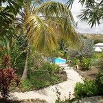 Tropischer Garten Don Genaro