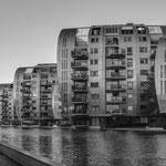 Den Bosch, Paleiskwartier