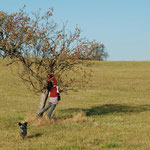Ich krieg den Apfel (Foto JP)