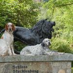 Englischer Adel ohne Stammbaum meets the Schlossgespenster