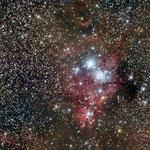 NGC 2264, le Cône, Lionel