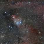 NGC 2264, le Cône, Fabien