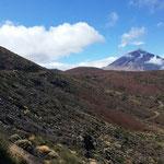 Pic de Teide, Fabien