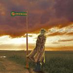 Die Vorbeifahrstelle:  Er wartet schon unendlich lange. Doch er wird nie abfahren… und er wird nie ankommen.