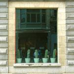 Antwerpen: Menschen gehen durch Kakteen.