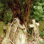London, Friedhof Highgate