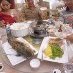 Mittagessen (das rechts ist Broho)