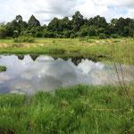 so schön kann gesicherte Wasserversorgung sein: ein Familienstaubecken in der Provinz Pursat