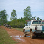 Buffalo vs. LWD Jeep
