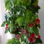 Autoportant plantes d'intérieur