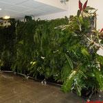 Décoration végétal naturel dans hall d'entreprise
