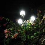 Die Strassenlampen sahen sehr romantisch aus, oder??