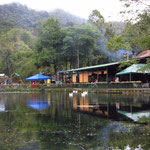 Das Restaurant Selva Negra
