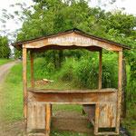 Mitten im Nirgendwo in Cahuita, an der Karibikkueste von Costa Rica...