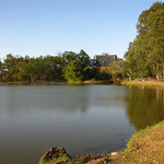Parque Sabana, endlich mal ein Park der nicht aus Beton sondern aus Gruenflaeche, Baeumen und nem grossen Teich besteht!!!