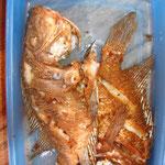 Gebackener Fisch aus dem Lago