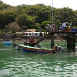 Fischerboot mit jeder Menge mahi mahi (Dorade, mein alter Bekannter dank Schwane) an Board ist auf jeden Fall lecker lecker!