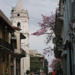 Avenida Central in Casco Viejo