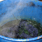 boiling leaves and yarn