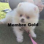 Mona - Cliquez pour voir son profil détaillé