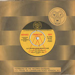 Promo Single, DJM DJS 267, England, 1972