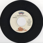 Promo Single Warner Bros./Wilbury Records 7-27637-A, USA, 1989