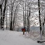 MTB-Winterwege südlich Hersbruck - Radelspaß im Neuschnee