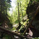 Von Altdorf zum Bruckkanal