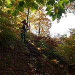 Oktobermotto: Die Fränkische Schweiz im Herbst