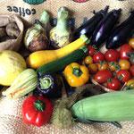 お届け野菜の写真(2015年7月配達例)