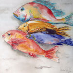 4 Fishes : 12 in. x 12 in. - 30 x 30 cm - 320,00 Euro