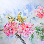 The Bougainvillea Visitor - 22  X 15 inch - 55 x 38 cm - 280,00 Euro