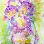 Pansies Moments  - 14,8 cm x 42 cm - 120,00 Euro