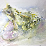 Draw me a frog 7,4 in. x 11 in. 19 x 28 cm  - 120,00 Euro