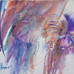 4The Elephant 14,2 in. x 18,9  in. - 36 x 24 cm - 480,00 Euro