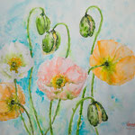 Some Spring Things - 22,0 in. x 16,5 in. - 56 x 42 cm -  320,00 Euro