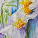 Narcisses - 24 x 38 cm - 260,00 Euro