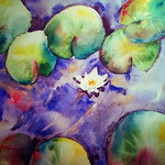 Water Lilies Pond -  16 in. x 12 in. - 41 x 31 cm - Private Collection