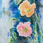 Icelandic Poppies - 9,4 in. x 12,6 in. - 24 x 32 cm - Private Collection
