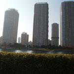 隅田川の対岸