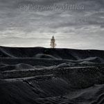 la rivincita della natura, la montagna di slag
