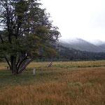 Bei unserem Übernachtungsplatz am argentinischen Lago Rucachoroi bei Aluminé hat es am Morgen erstmals weit herunter geschneit