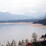 Das Graue sind Tuffsteine vom aktiven Vulkan Cordón Caulle. Sie schwimmen hier auf dem Wasser des Lago Llanquihue