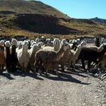 Verkehrsstau in Peru