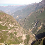 Hoch über dem Colca Cañon