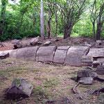 Im süden Equadors liegt einer der beiden versteinerten Wäldern Südamerikas