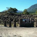 Schon der Eingang zum National Park Conguillio gibt einen Vorgeschmack der Lavamassen die sich ausbreiten