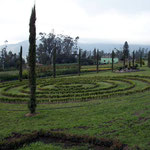Gärtnerei von Graham, der Reisenden einen Stellplatz zur Verfügung stellt