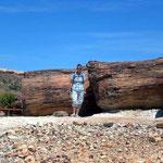 Versteinerter Baum, südlich von Pico Truncado.